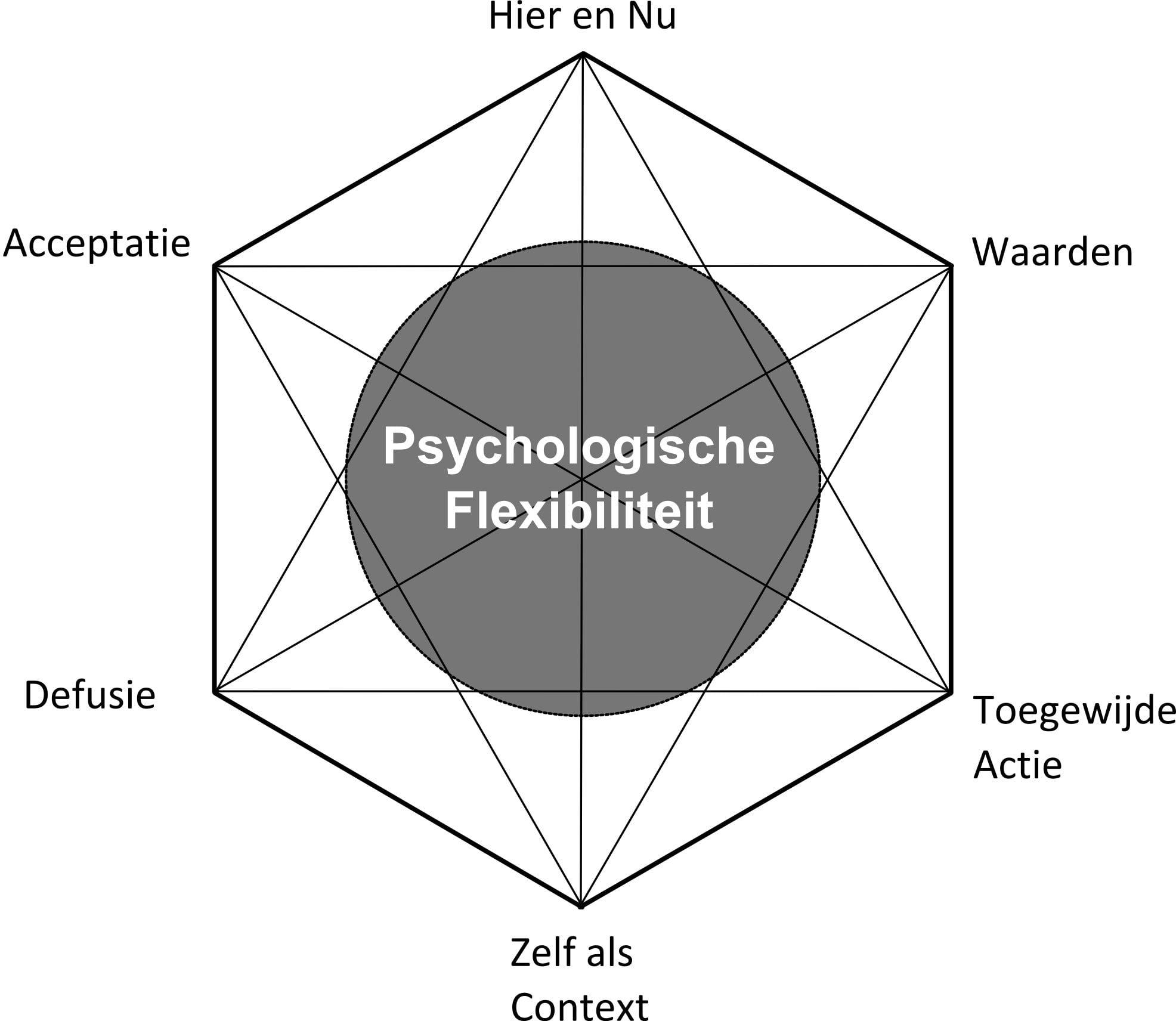 Afbeeldingsresultaat voor hexaflex act